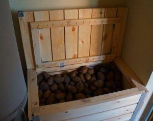 Картофель вполне возможно хранить в домашних условиях