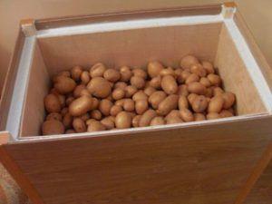 Слой утеплителя спасет картофель от порчи