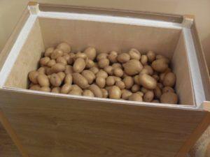 ящик для картошки
